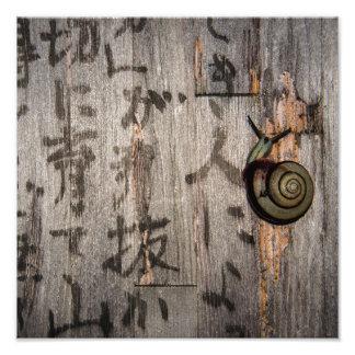 Snail mail Escargot en caligrafía asiática Cojinete