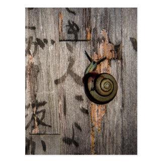 Snail mail Escargot en caligrafía asiática Postal