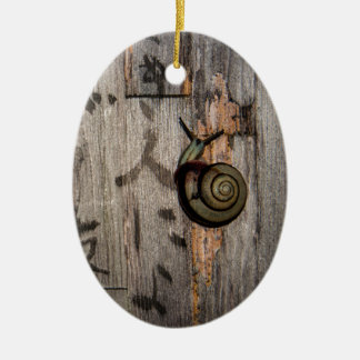 Snail Mail Escargot on Asian Calligraphy Ceramic Ornament