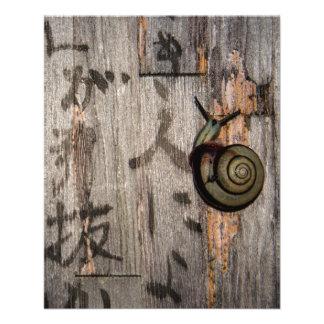 Snail Mail Escargot on Asian Calligraphy Flyer