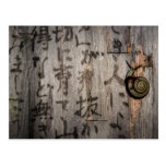 Snail Mail Escargot on Asian Calligraphy Post Cards