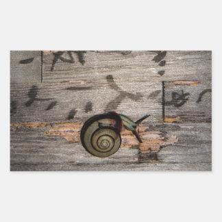 Snail Mail Escargot on Asian Calligraphy Rectangular Sticker