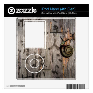 Snail Mail Escargot on Asian Calligraphy Decals For iPod Nano