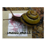 Snail mail postal