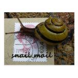 Snail mail postcards