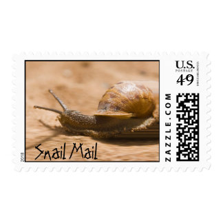 Snail Mail Speedy Desert Postage Stamps