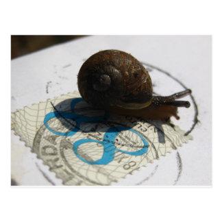 snail mail tarjetas postales