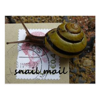 Snail mail postales