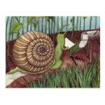 Snail mail tarjeta postal