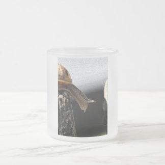 Snail Frosted Glass Mug