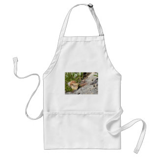 Snail of Burgundy in the french Alps Adult Apron