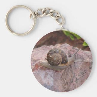 Snail on a Rock Basic Round Button Keychain