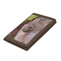 Snail on a Rock Trifold Wallet