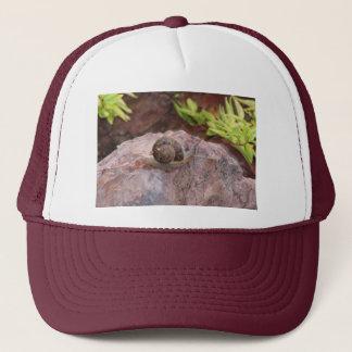 Snail on a Rock Trucker Hat