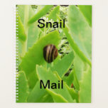 "Snail on a very green plant. planner<br><div class=""desc"">Taken in my garden.</div>"