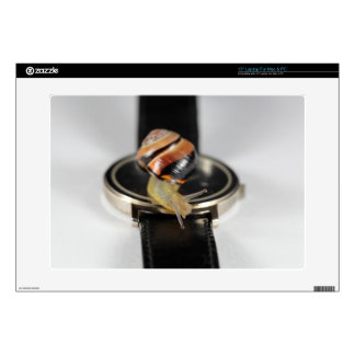 """Snail on a watch 15"""" laptop decals"""