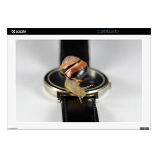 """Snail on a watch decal for 17"""" laptop"""