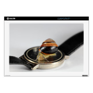 Snail on a watch decal for laptop