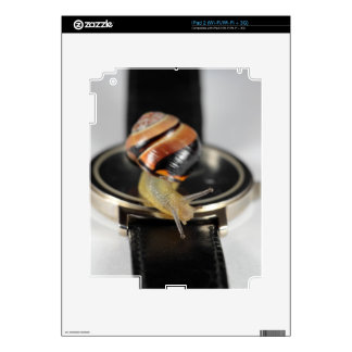 Snail on a watch decal for the iPad 2