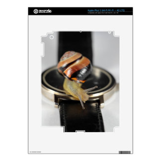 Snail on a watch decals for iPad 3