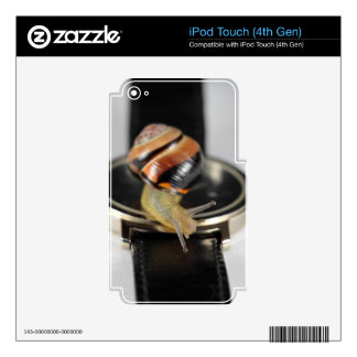 Snail on a watch decals for iPod touch 4G