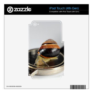 Snail on a watch iPod touch 4G skin