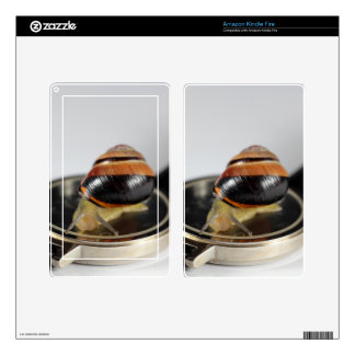 Snail on a watch kindle fire decals