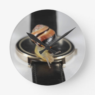 Snail on a watch round clock