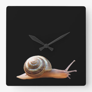 Snail on black ~ Clock