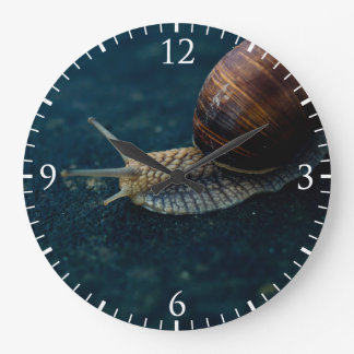 Snail On Blue Closeup, Nature Animal Photograph Large Clock