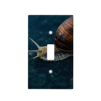 Snail On Blue Closeup, Nature Animal Photograph Light Switch Cover