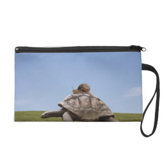 Snail over a turtle wristlet