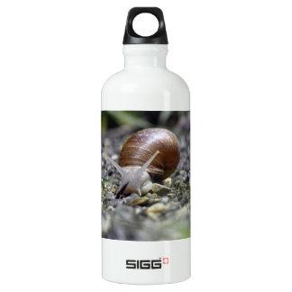 Snail Photo Aluminum Water Bottle