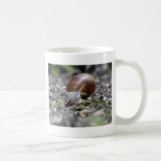 Snail Photo Coffee Mug