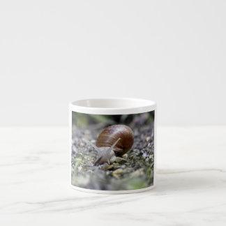 Snail Photo Espresso Cup