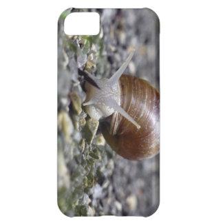 Snail Photo iPhone 5C Case