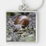 Snail Photo Key Chain