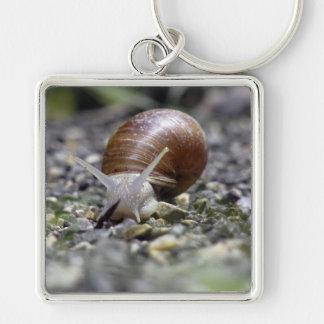 Snail Photo Keychain