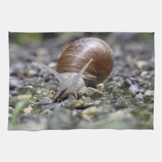 Snail Photo Kitchen Towel
