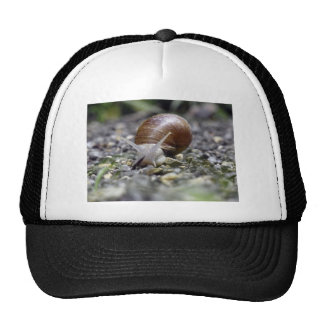 Snail Photo Trucker Hat