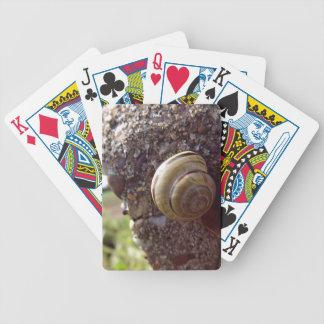Snail Poker Deck