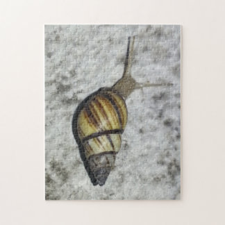 Snail poster jigsaw puzzle