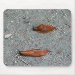 snail race mouse pad