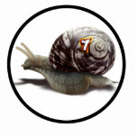Snail Racer - Lucky #7 Photo Cut Out