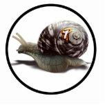 Snail Racer - Lucky #7 Photo Cut Out