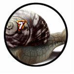 Snail Racer - Lucky #7 Photo Sculptures