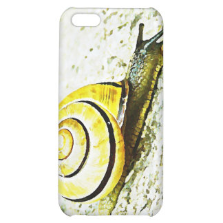 Snail s Pace Case For iPhone 5C
