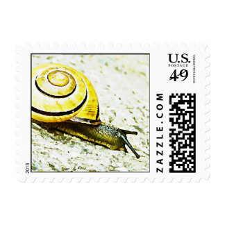 Snail s Pace Postage Stamps