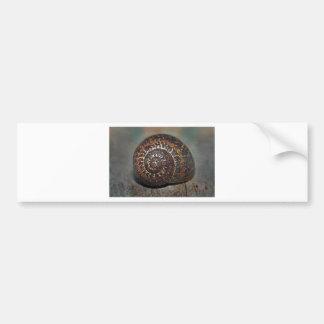 Snail Shell Bumper Sticker