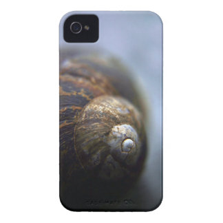 Snail Shell Case-Mate iPhone 4 Case